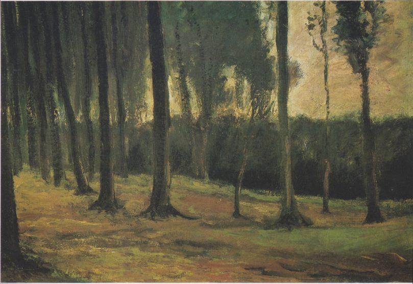 Waldrand Vincent van Gogh